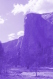 purple hued monochrome of El Captian, a giant cliff in Yosemete National Park.  © 2015 2016 © APC